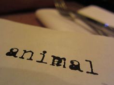 Animal Restaurant. Only the most bravest human being are suitable for this adventure in your mouth! :) Our next stop!
