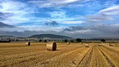 08.08.2013 Ernte im Weserbergland: Diese Strohballen auf einem Feld bei Esperde hat Rolf Sander fotografiert.