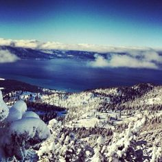 "Discovered by: Aaron Bulthuis, ""A little taste of snow heaven."" At Heavenly Mountain Resort, South Lake Tahoe, CA - #snowtrove"