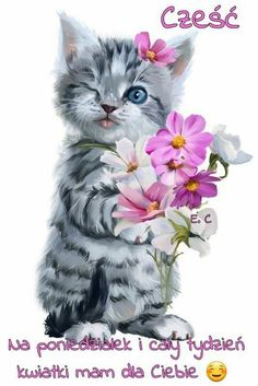 Cats Names Refferal: 4035864005 Good Morning Cat, Cute Good Morning Quotes, Baby Animals, Cute Animals, Kitten Drawing, Thank You Images, Grey Cats, Cat Art, Cats And Kittens