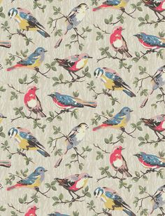 Small Garden Birds | Beautiful birds from our archive, scaled down and recoloured for the season | Cath Kidston Autumn Winter 2016 |