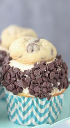 Ultimate Cookie Dough Cupcakes ~ A vanilla malt cupcake with cookie dough frosting, rolled in chocolate chips and topped with a chocolate chip cookie!