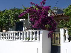 Kiparisi, Greece Beautiful World, Greece, Sunshine, Sidewalk, Plants, Greece Country, Side Walkway, Nikko, Walkway