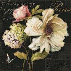 Posterazzi Marche de Fleurs on Black II Canvas Art - Lisa Audit (24 x 24)