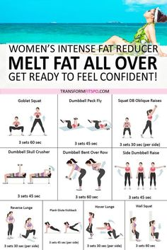 Covet for workout plans? Kindly study these fitness workout suggestions reference 9305394778 immediately. Weight Loss Workout Plan, Weight Loss Plans, Gym Workouts To Lose Weight, Full Body Weight Workout, Total Body Toning, Plus Size Workout, Full Body Beginner Workout, Body Weight Circuit, Extreme Workouts