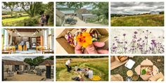 Picknicken bij the river Cottage
