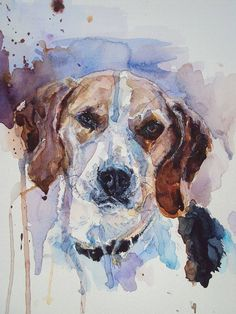 Mollie Beagle commission, watercolour on paper @Karen Grenfell