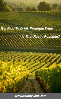Premium wines from around the world at wholesale prices. Satisfaction guaranteed. Join our wine club and get your wine for free. Work at home and earn an extra income. All wine lovers are welcome. www.colonywine.com.