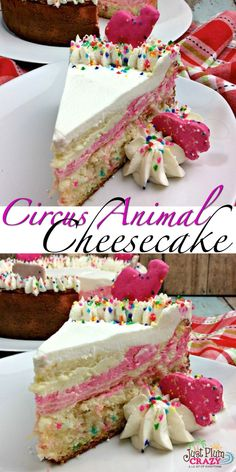 Circus Animal Cheesecake Recipe From Just Plum Crazy It's here! From plain Jane to downright fancy, like our Circus Animal Cheesecake Recipe, there is a cheesecake recipe for everyone. Köstliche Desserts, Delicious Desserts, Dessert Recipes, Unique Desserts, Summer Desserts, Oreo Dessert, Birthday Cake Cheesecake, Cheesecake Cupcakes, National Cheesecake Day