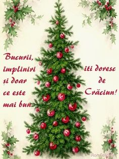 Holidays And Events, Happy New, Happy Halloween, December, Christmas Tree, Holiday Decor, Quotes, Teal Christmas Tree, Quotations