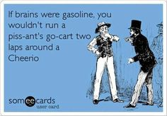 If brains were gasoline, you wouldn't run a piss-ant's go-cart two laps around a Cheerio