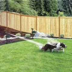 Backyard Patio, Backyard Landscaping, Landscaping Ideas, Farmhouse Landscaping, Backyard Drainage, Rustic Backyard, Pergola Ideas, Porch Ideas, Outdoor Projects