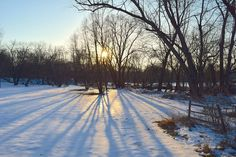 Free Image on Pixabay - Snow, Park, Sunset, Light, Shadows Free Pictures, Free Images, Hidden Face, Vacation Trips, Google Images, Snow, Cold, Warm, Sunset