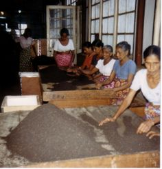 Tea assortment (nearby Kandy) in Sri Lanca   Photo: Ryi on http://commons.wikimedia.org/wiki/File:Tee_S.jpg   Public Domain