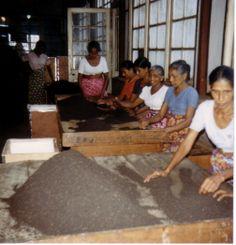 Tea assortment (nearby Kandy) in Sri Lanca | Photo: Ryi on http://commons.wikimedia.org/wiki/File:Tee_S.jpg | Public Domain
