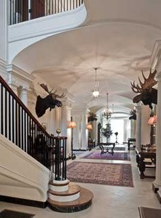 Going to Maine this week, maybe I'll find a moose head ;)