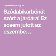 Szódabikarbónát szórt a járdára! Baking Soda, Household, Cleaning, Homemade, Healthy, Home Decor, Medical, Creative, Tips