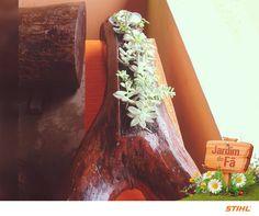 Nós adoramos a reutilização do tronco de árvore para servir de casa para as suculentas da  Fabiana Chinarelli. Lindo, né?