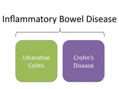 What does IBD cost us over the course of a year?