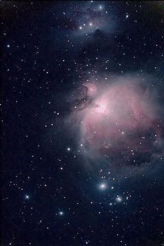 """Space Stars The Orion nebula (Had to add this--please make sure you name your nebulae and not just """"hubble"""" or something) - Cosmos, Orion Nebula, Carina Nebula, Constellation Orion, Horsehead Nebula, Helix Nebula, Andromeda Galaxy, Space Photos, 4 Photos"""