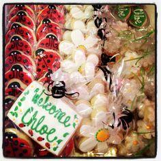 Ladybug baby shower cookies