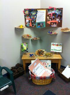 A Reggio display about birds. Classroom Displays, Classroom Ideas, Art For Kids, Crafts For Kids, Animal Classification, Bird Theme, Classroom Environment, My Themes, Reggio Emilia