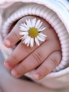 """""""Дети! Цветы! Жизнь!"""" – Сообщество – Google+"""