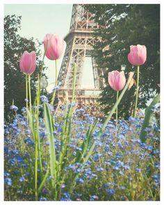 Springtime at the Eiffel Tower, Paris - dreamy romantic floral Paris home decor, Pink Tulips, Forget-Me-Nots,  Original Fine Art Photography...