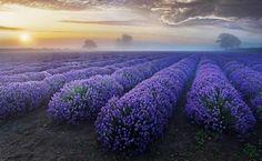 Europe | plus beaux endroits au monde