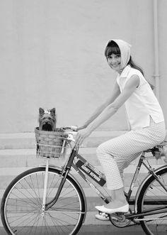 Audrey Hepburn with furry pooch in bicycle basket