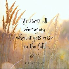 Happy Fall Y'all, Me Quotes, Fall Quotes, Fall Poems, Fall Sayings, Hello Autumn, Autumn Inspiration, I Fall, Falling In Love