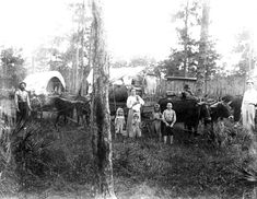 Florida State Genealogical Society - Florida Pioneers