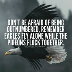 Be like an Eagle💯 Double tap and Tag someone😊 #SuccessDominator ✨ . 💥Follow @billionaire.magazine for daily Motivation and Success🔥 Best Inspirational Quotes, Uplifting Quotes, Positive Quotes, Motivational Quotes, Positive Vibes, Babe Quotes, Dream Quotes, Swag Quotes, Sunday Quotes