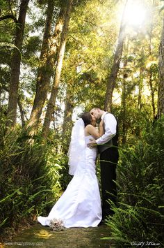 Getting married in Plett isn't just beaches but gorgeous Forest too. Christy Strever Photography www.christystrever.com  ShowMe Plett www.showmeplett.co.za