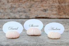 Sea Urchin Shell Place Card Holders  we ❤ this!  moncheribridals.com  #beachwedding #escortcards #weddingseashells