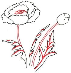 Easy to draw flowers how to draw poppy step 5 for details in how to draw a poppy in 5 steps mightylinksfo
