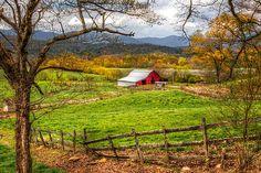 Red Barn Print By Debra And Dave Vanderlaan