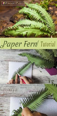 Paper greenery tutorial, FREE template Paper fern tutorial, super easy, paper leaves, paper flower Paper crafts and paper flowers Paper Flowers Craft, Giant Paper Flowers, Felt Flowers, Flower Crafts, Flower Paper, Paper Garlands, Paper Flowers Wedding, Paper Flower Diy Easy, Diy Paper Flower Backdrop