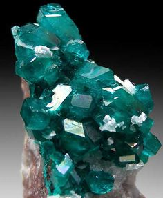 Dioptase from Tsumeb Mine, Namibia / Mineral Friends <3