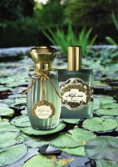 Ninfeo Mio •:*ღ*:• Annick Goutal
