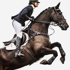 The most important role of equestrian clothing is for security Although horses can be trained they can be unforeseeable when provoked. Riders are susceptible while riding and handling horses, espec… Equestrian Outfits, Equestrian Style, Horse Riding Gear, English Riding, Show Jumping, Equine Photography, Horseback Riding, Beautiful Horses, Jumping Horses