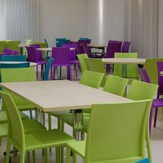 Plastic chairs delivered to a Safari Park.  Available in wide range of colours #safari #colours #plasticchairs # choice