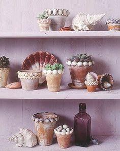 Vamos decorar com conchas - Barraco Chic                                                                                                                                                                                 Mais