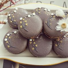 Coffee Shop Aesthetic, Aesthetic Food, Bakery Recipes, Dessert Recipes, Macarons, Cupcake Videos, Macaroon Cookies, French Macaroons, Macaroon Recipes