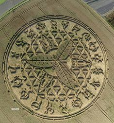 Este crop circle apareció en Ansty, Nr Salisbury, Wiltshire, Reino Unido.