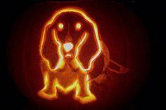 Basset Pumpkin Carving