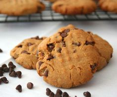 Sunbutter Chocolate Chip Cookies  like peanut butter cookies, but suitable for folks with peanut allergy http://alldayidreamaboutfood.com/2011/09/sunbutter-chocolate-chip-cookies-healthy-snacks-for-kids.html <- Recipe If you wanted to make this Gluten free use Bob's Red Mill Gluten free Flour mix