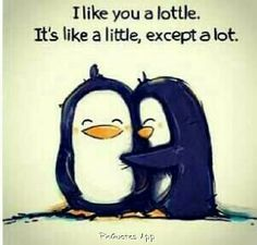 I like you a lottle.