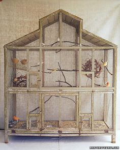 I would never keep caged birds...but would love to make some kind of bird habitat with open doors where they can make a home!