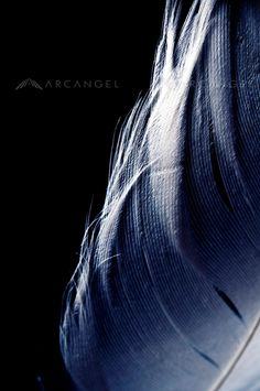Arcangel | Creative stock photography | Licensed and Royalty free images -